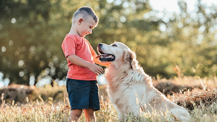 a child pets his dog